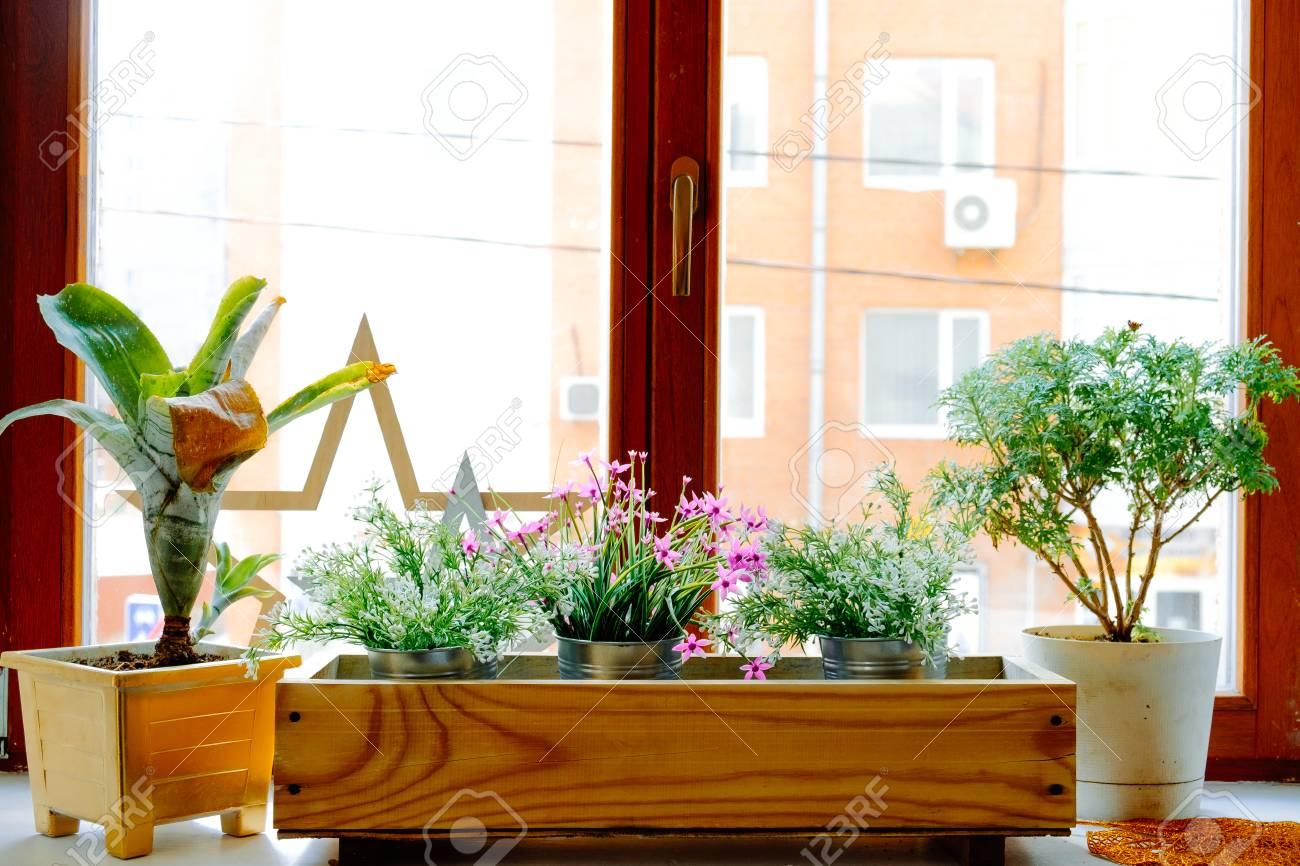 Fenster Und Blumenkasten. Blumen Am Fenster An Einem Klaren ...