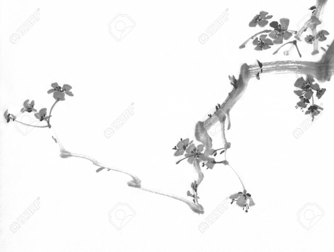 A Plum Tree Branch In Bloom Traditional Chinese Painting Stock Photo Picture And Royalty Free Image Image 130767718