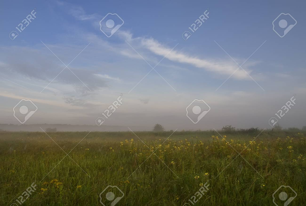 Sunrise on the nature of the early summer morning Stock Photo - 20555745