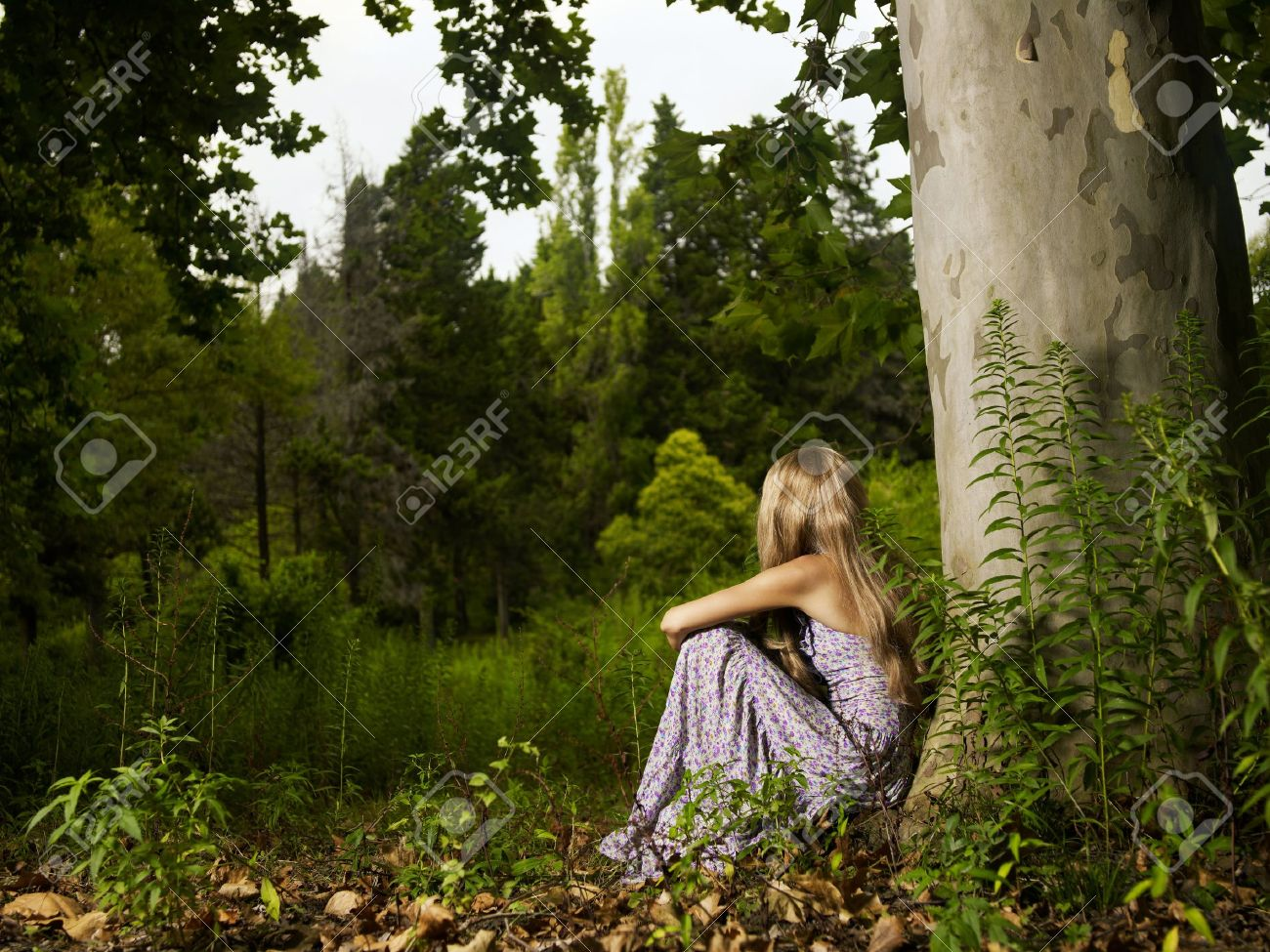 A beautiful young lady sitting in a tree in the forest Stock Photo - 10816038