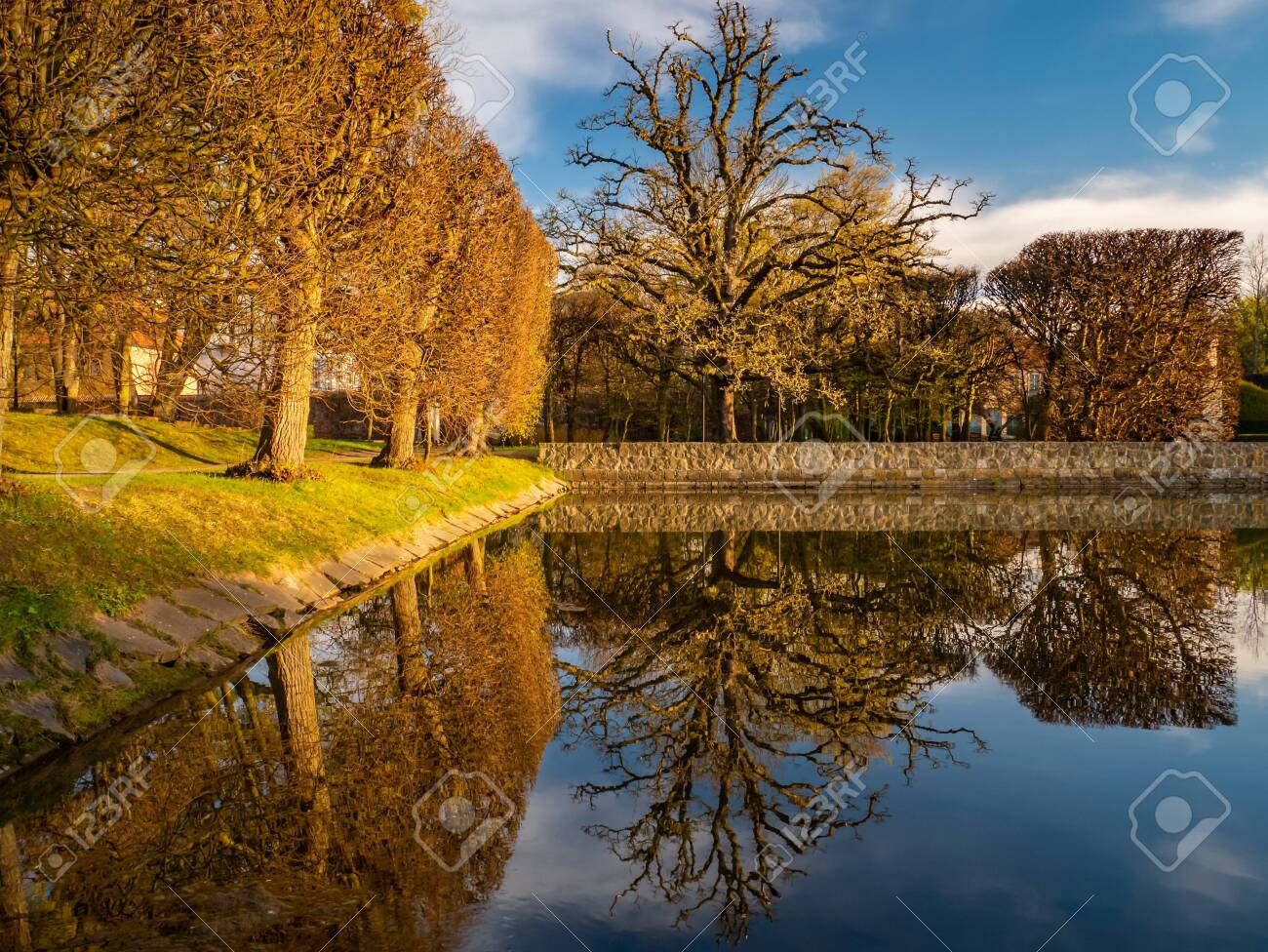 Trees and their reflection in the Oliwa Park. Early spring. - 123609671