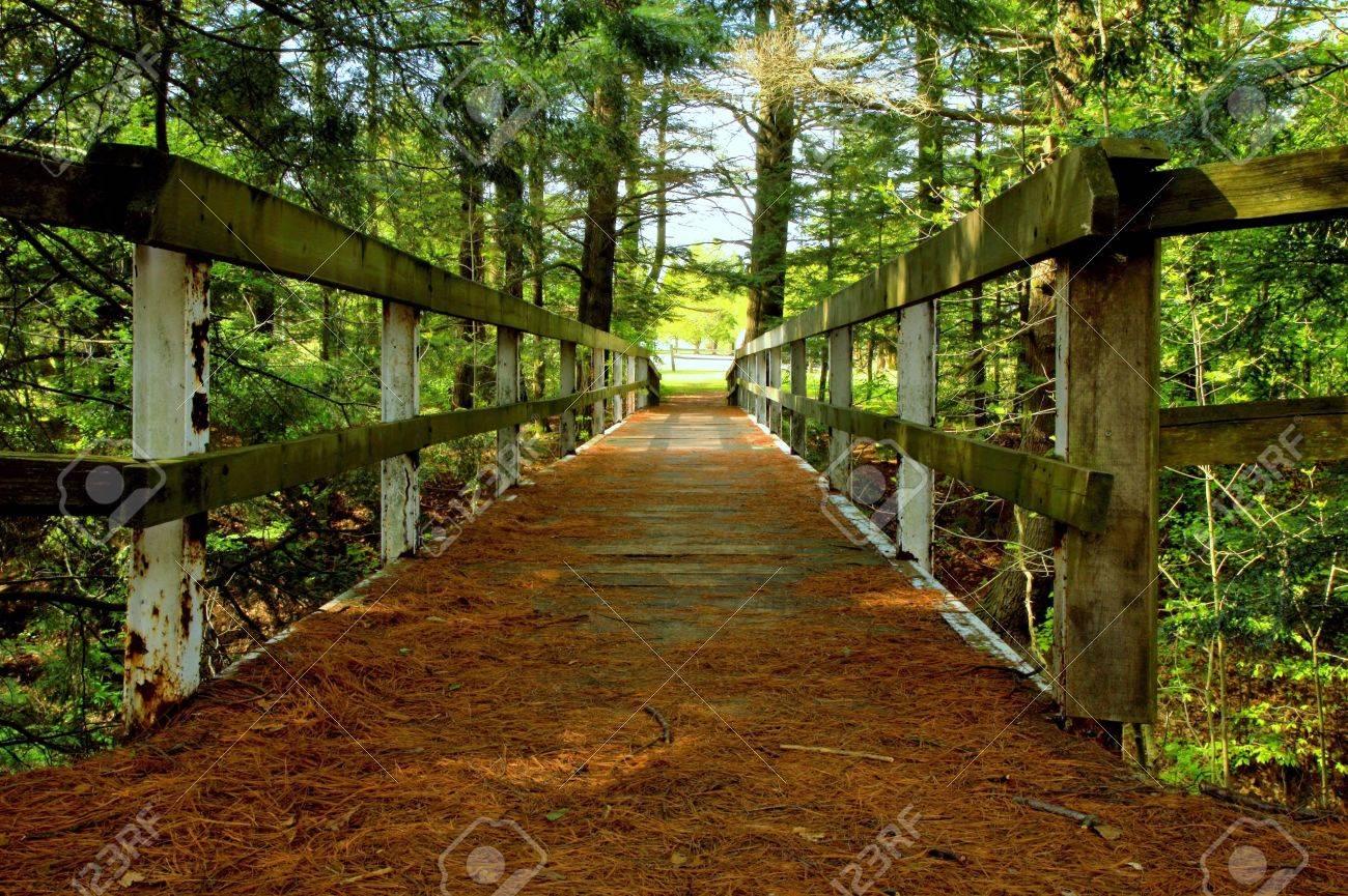 Michigan sanilac county lexington - Crossing Over Rustic Wooden Bridge Over A Ravine Sanilac County Park Lexington Michigan Stock Photo