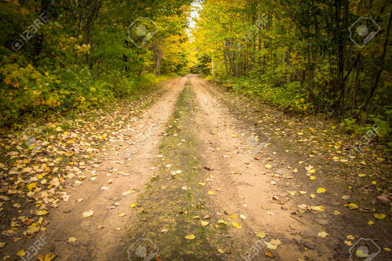 ⭐️ Cảnh Đẹp Mùa Xuân Trên Thế Giới ⭐️ 47525107-down-the-dirt-road-remote-country-road-surrounded-by-the-autumn-colors-of-the-northern-michigan-fore