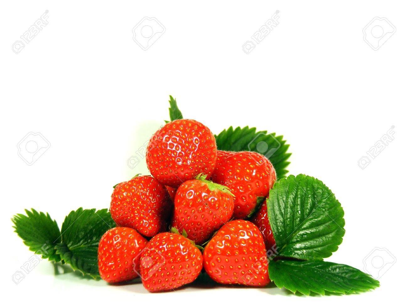 Isolated fruits fresh Strawberries Stock Photo - 11050766