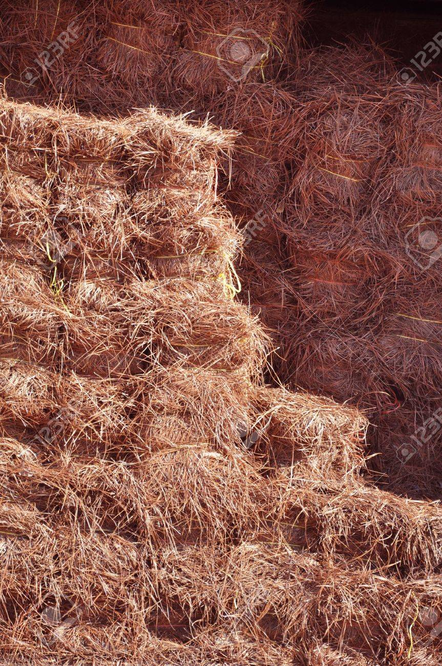 Charming Pine Straw For Sale At A Garden Supply Center In North Carolina Stock Photo    15217576