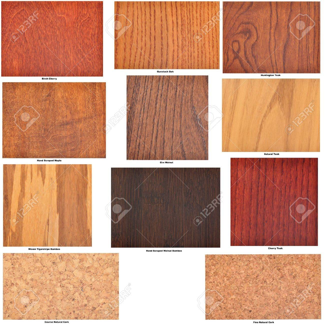 Collection Of Isolated Wooden Flooring Samples With Identifying