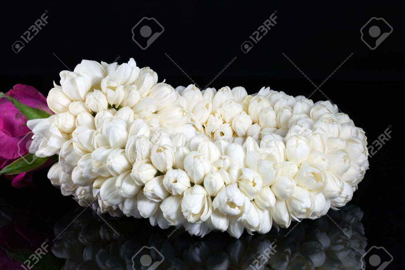 Beautiful Jasmine Garland Of Flowers Stock Photo Picture And