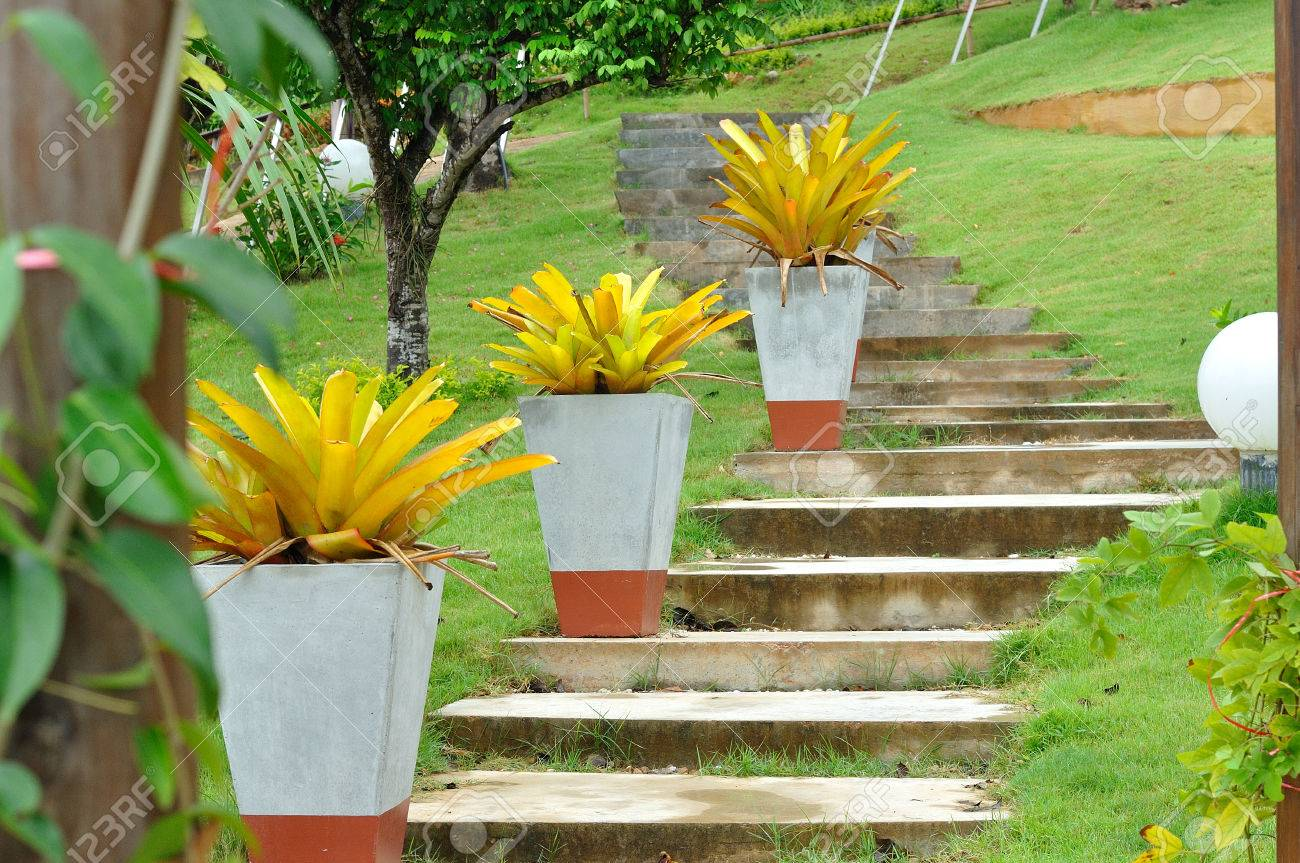 Stock photo stone stair and big flower pots in nice garden