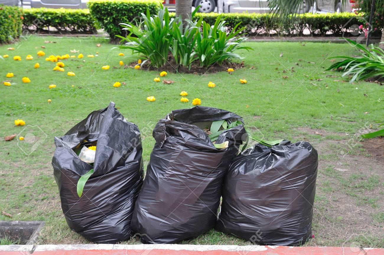El Bolsas El En De Patio Jardín En Negras Verde 3 Fotos Basura xgwqTSpp