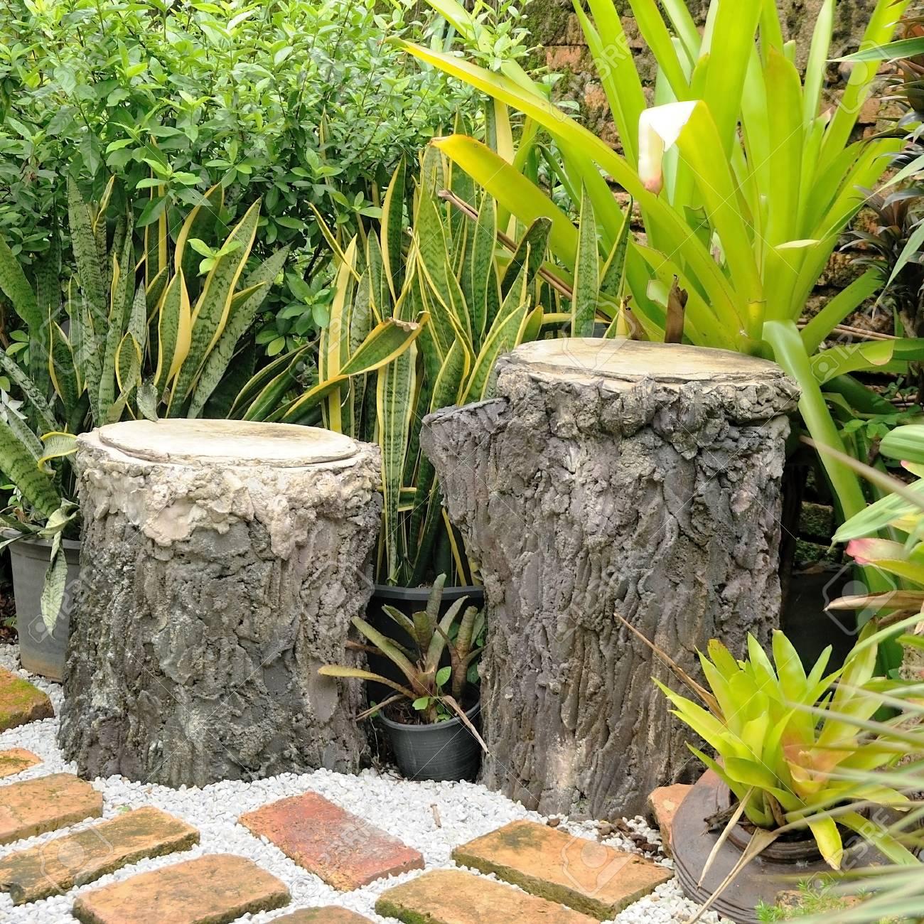 Doppelbaumstümpfe Sitz Im Garten, Gartendesign. Standard Bild   64122429