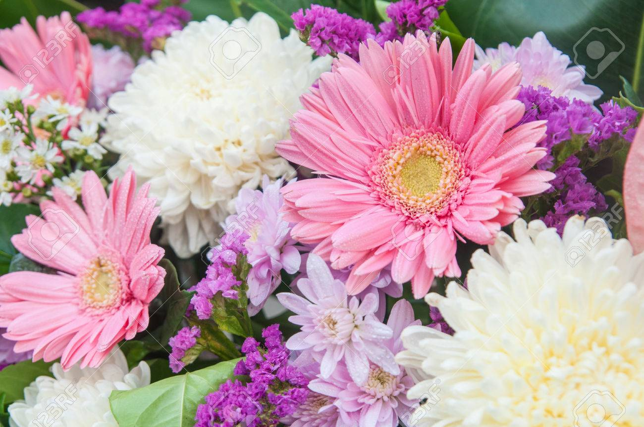 Multi color of gerbera and lily flowers stock photo picture and multi color of gerbera and lily flowers stock photo 81049104 izmirmasajfo