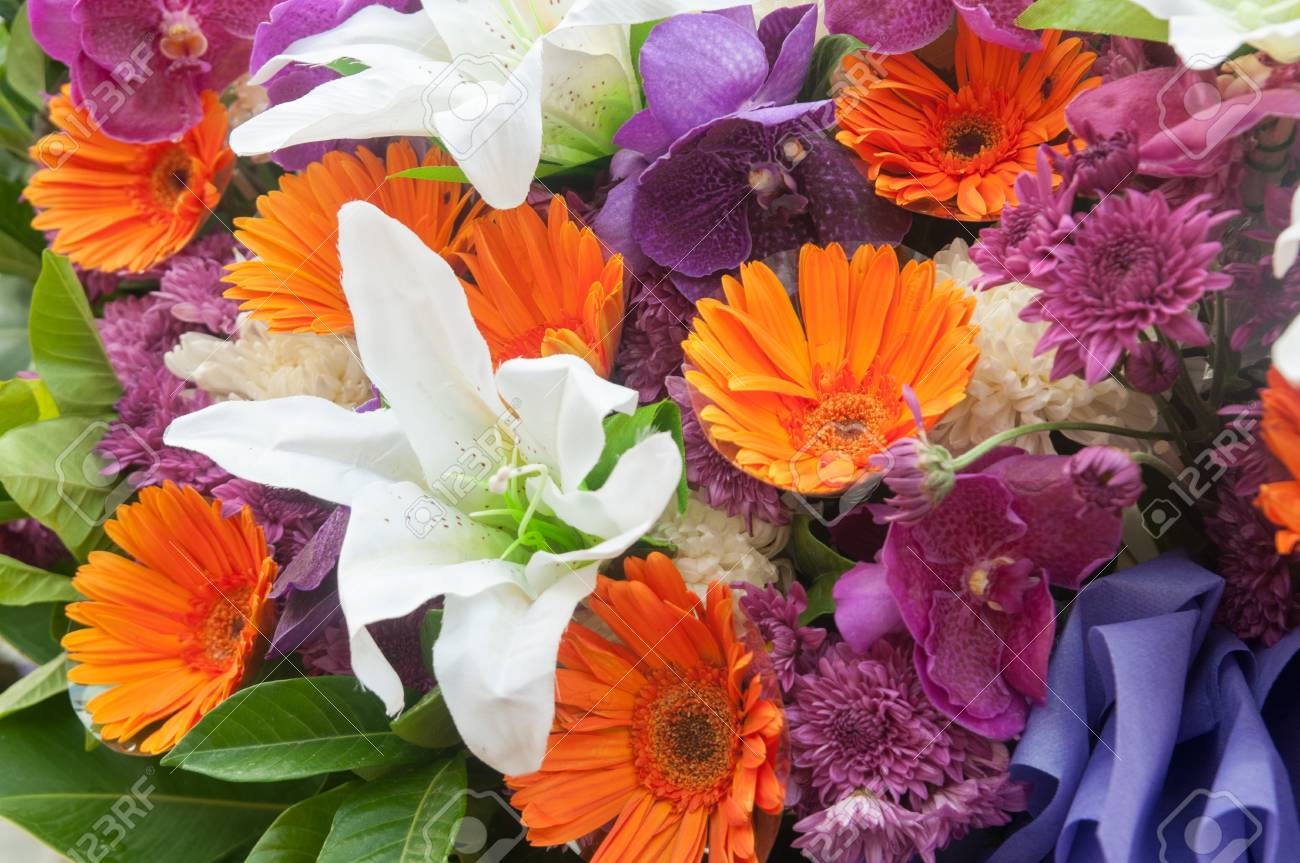Multi color of gerbera and lily flowers stock photo picture and multi color of gerbera and lily flowers stock photo 81053397 izmirmasajfo