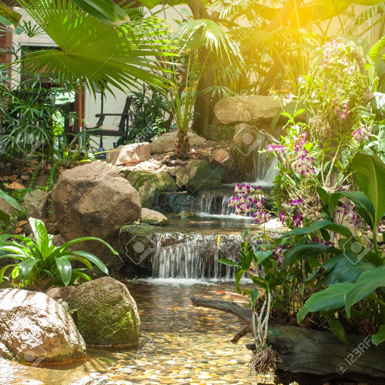 Schöne Kleine Wasser Fallen Und Orchidee Blumen Mit Grünen Pflanze ...