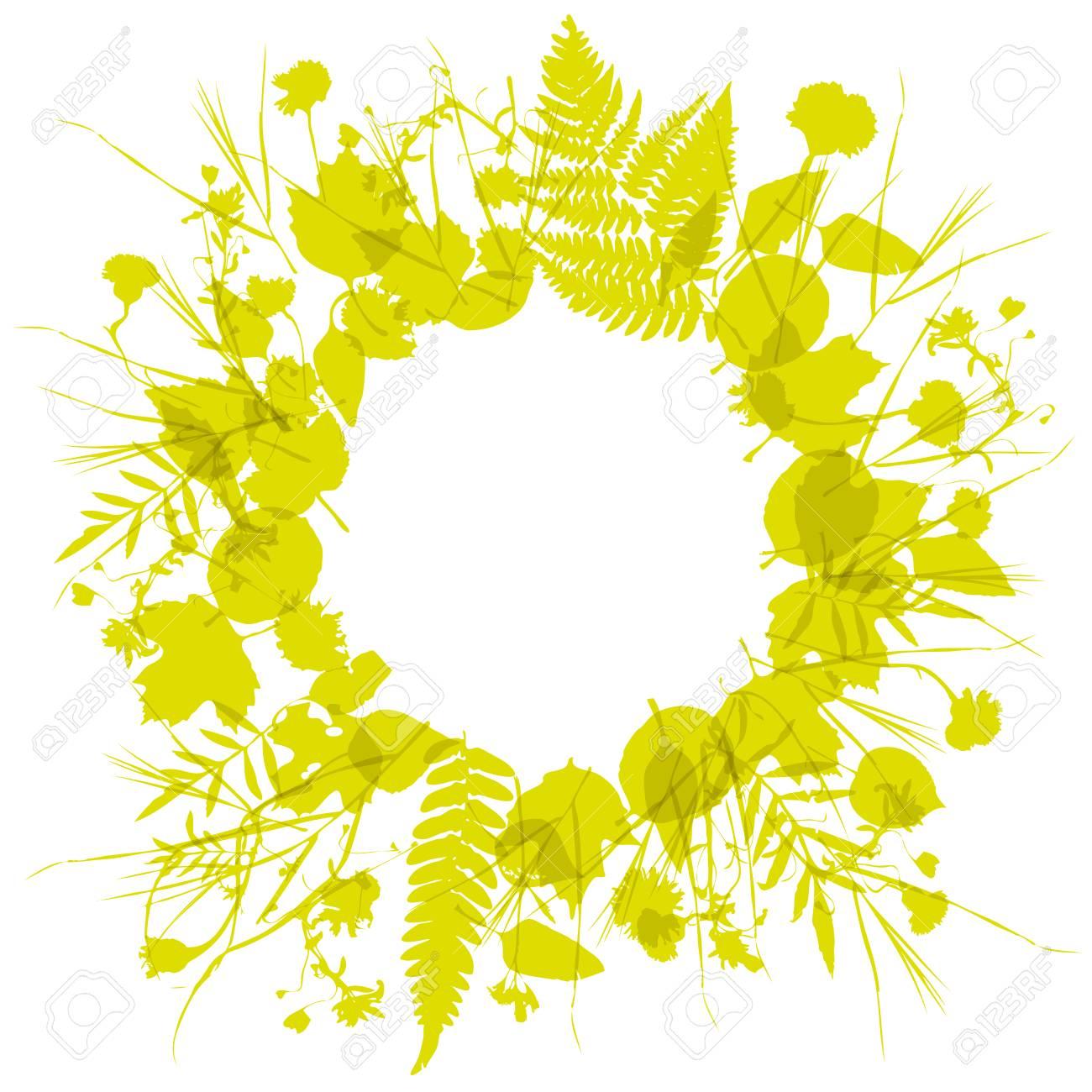 couronne florale cadre rond de fleurs, design naturel laisse des