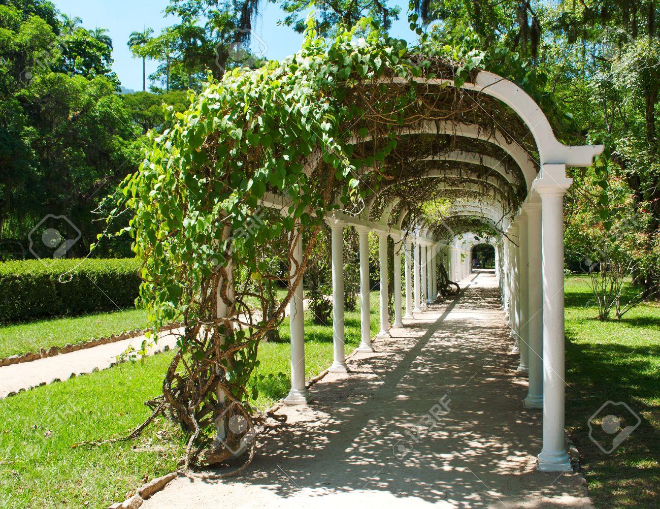 Pergola in Botanical Garden in Rio de Janeiro  Brazil Stock Photo - 13113108