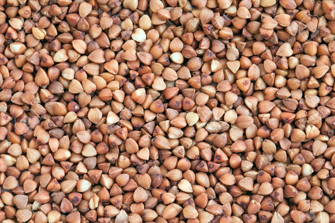 Buckwheat texture  Buckwheat groats or grains background Stock Photo - 13404006