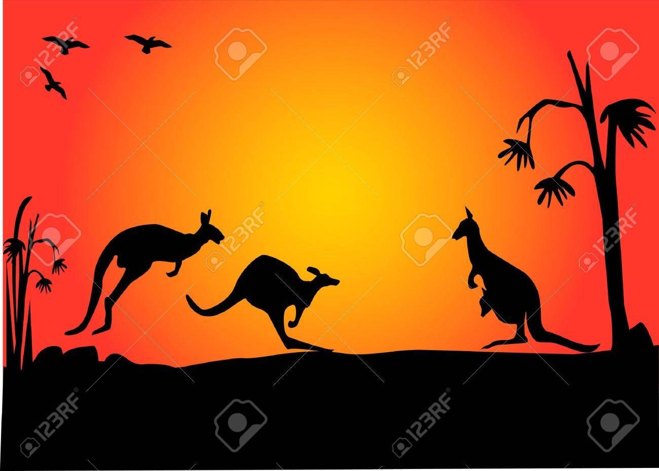three australian kangaroos hopping in the sunset Stock Vector - 7125230