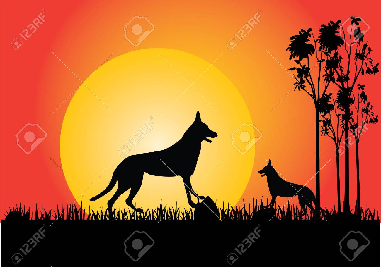 two dingo in the sunset trees and grass Stock Vector - 7637518