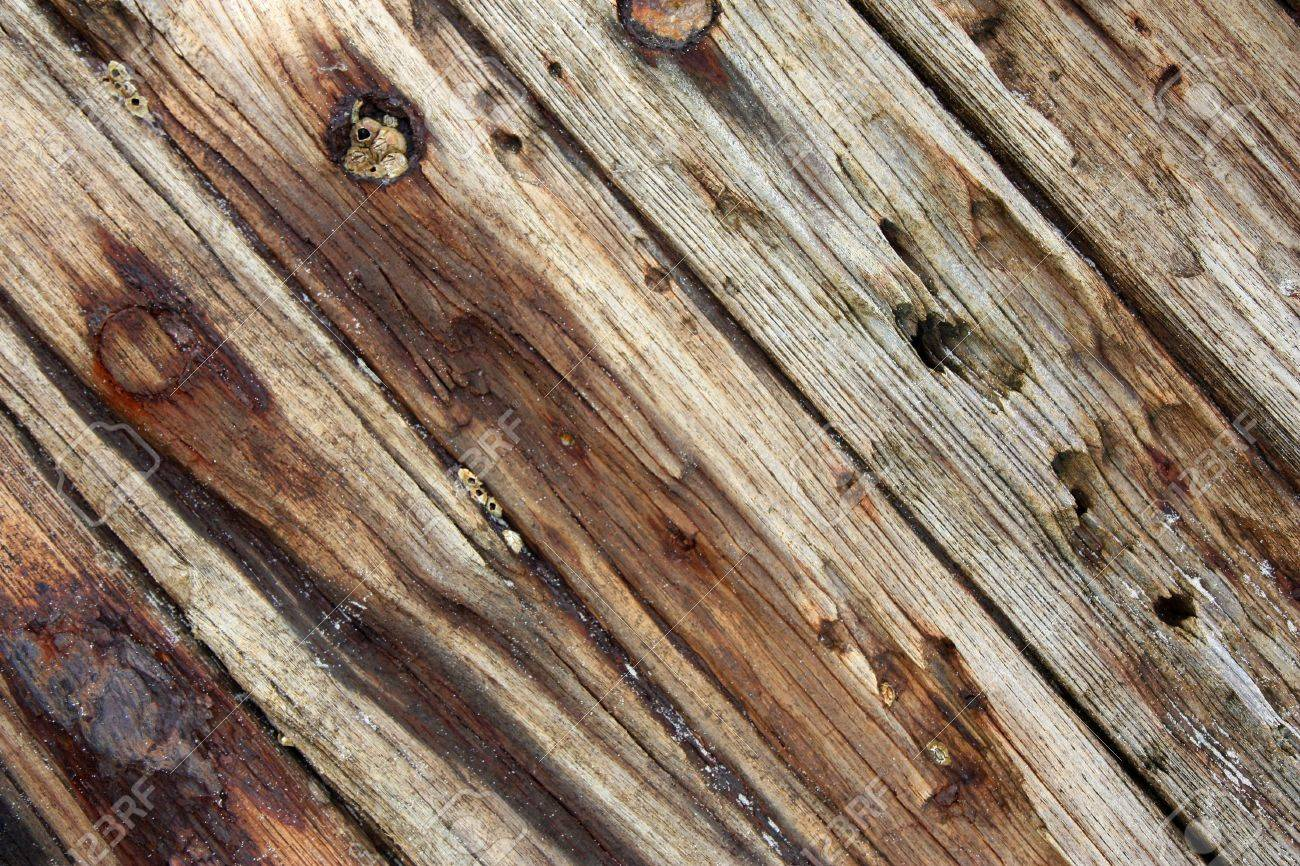 planks from an old wrecked ship with rusty nails Stock Photo - 7678257