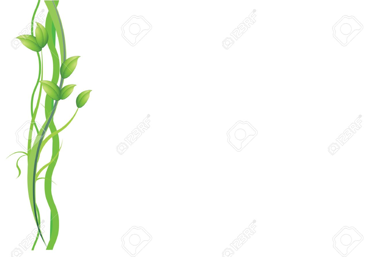 a green  plant and vines on white background Stock Vector - 7745600