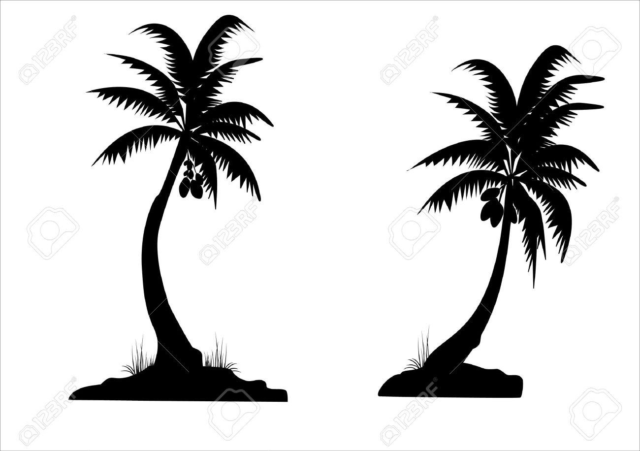 Palm Trees Background Black And White Vector Two Black Palm Trees