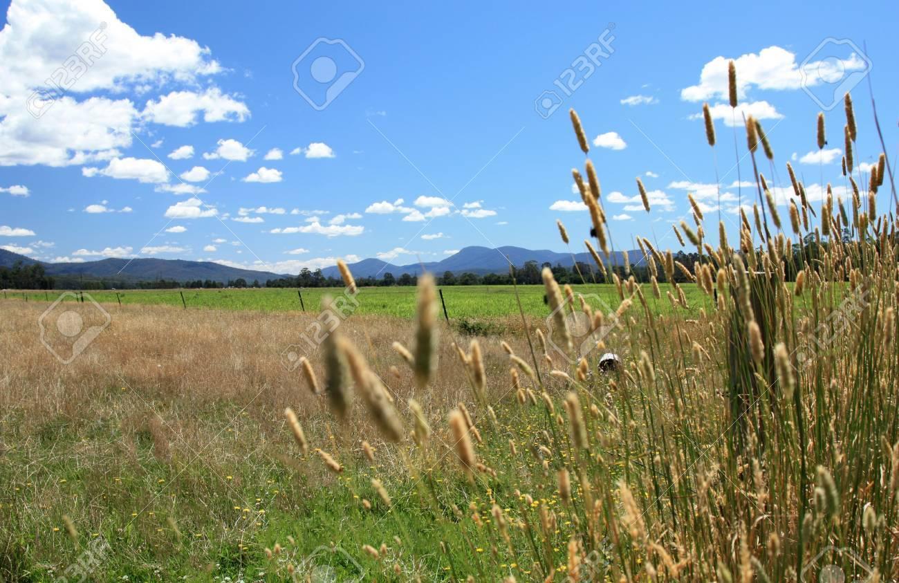 view of farm land near Kiama NSW Australia Stock Photo - 9915748