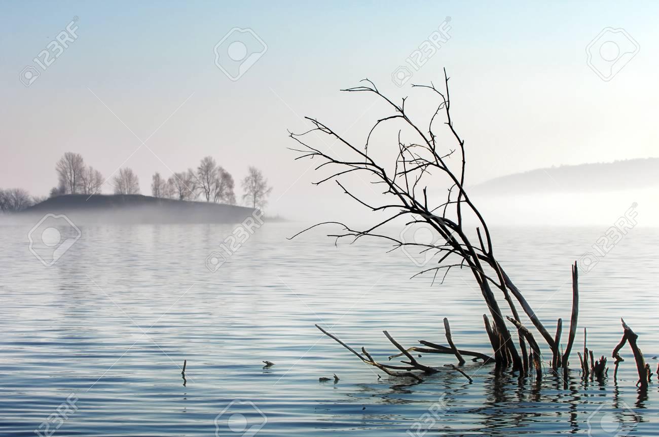 river Stock Photo - 14084276