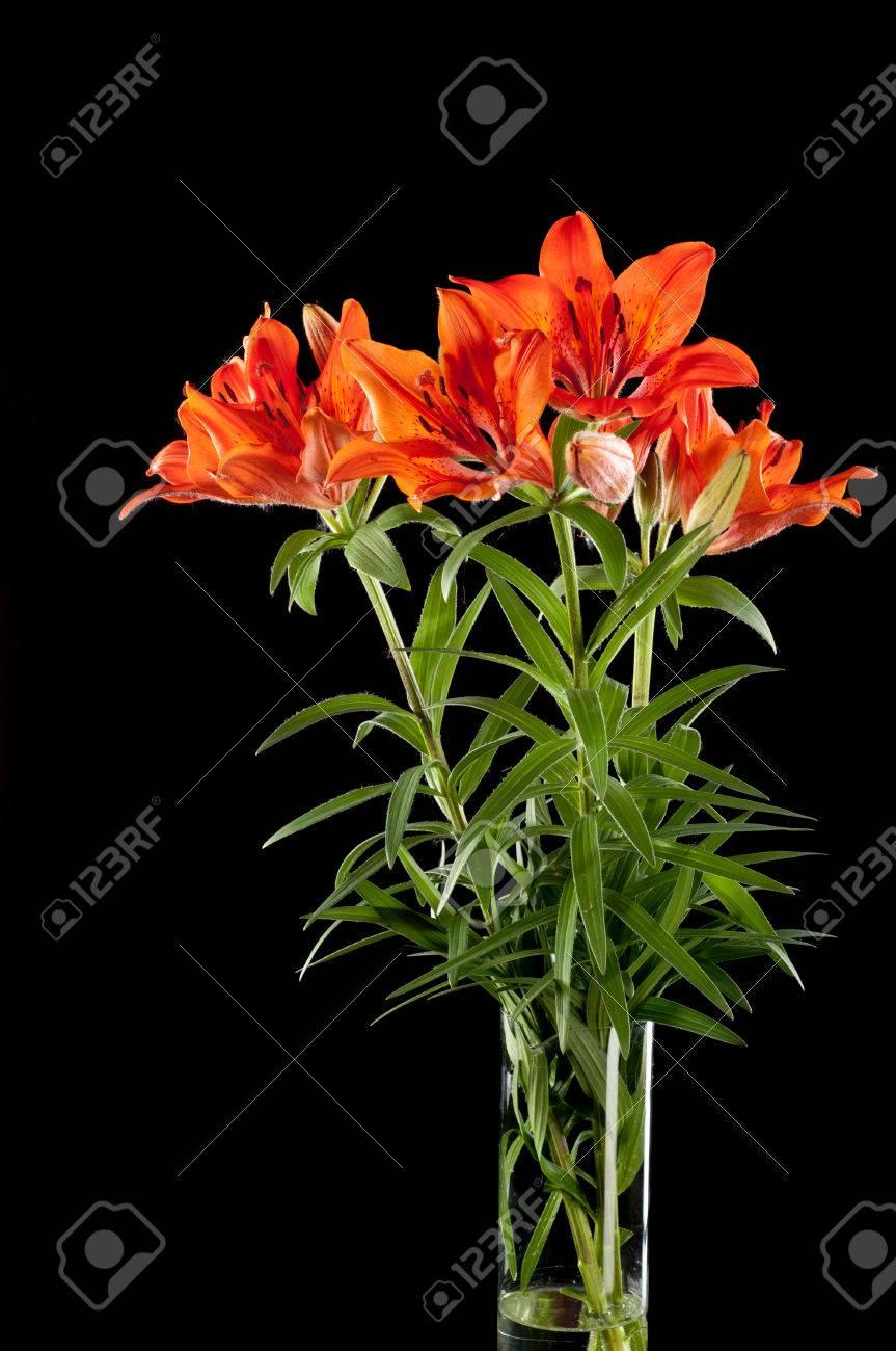 Red lilies a heraldic fleur de lis a vibrant spray of two wine red lilies a heraldic fleur de lis a vibrant spray of two izmirmasajfo