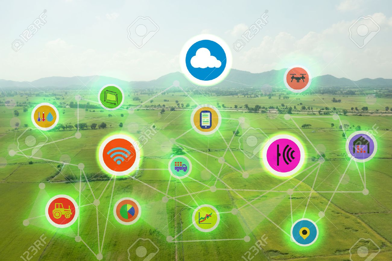 internet of things industrial agriculture,smart farming concepts,the various farm technology in the futuristic icom on the field background ict(information communication technology) - 71405324