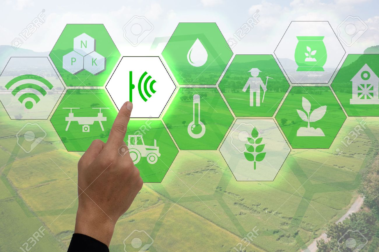 Internet of things(agriculture concept),smart farming,industrial agriculture.Farmer point hand to use augmented reality technology to control ,monitor and mangement in the field - 70854393