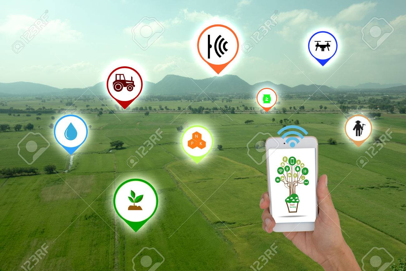 Internet of things(agriculture concept),smart farming, smart agriculture.The farmer using application in phone to control and monitor the condition by wireless sensor system in the agriculture field - 71405312