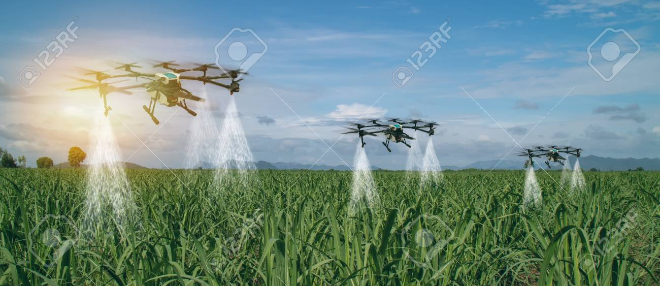 iot smart agriculture industry 4 0 concept, drone (in precision