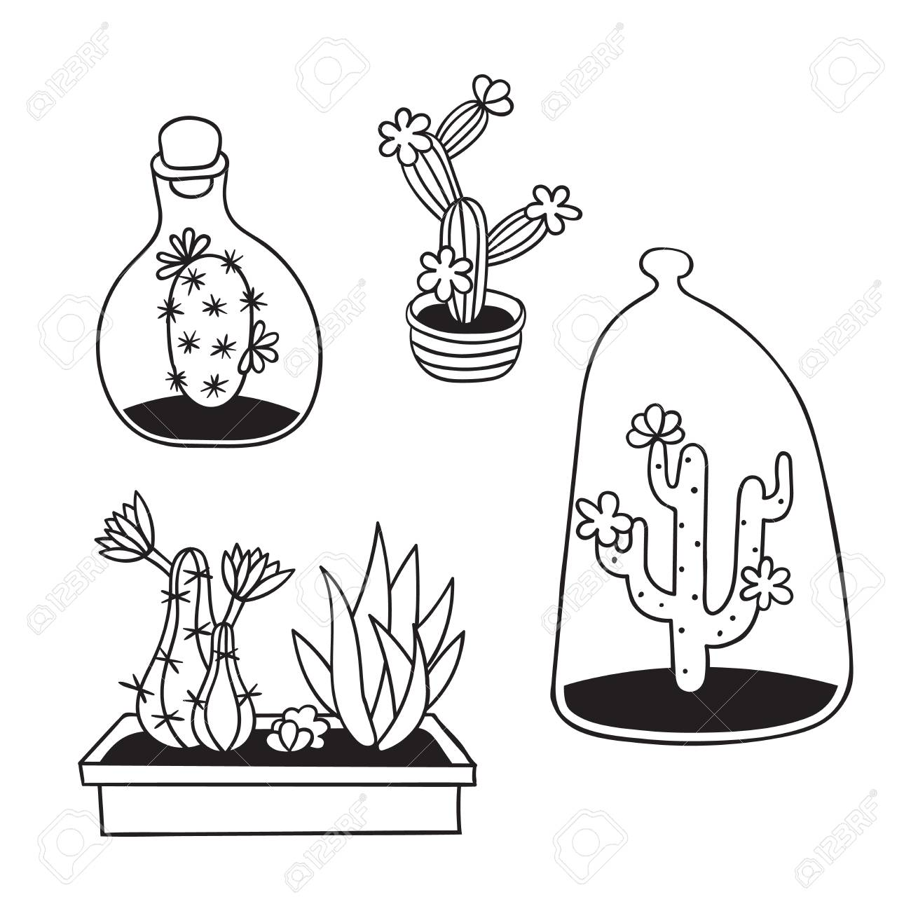Set Of Cactuses With Flowers In Terrariums And Pots For Coloring Royalty Free Cliparts Vectors And Stock Illustration Image 120458836
