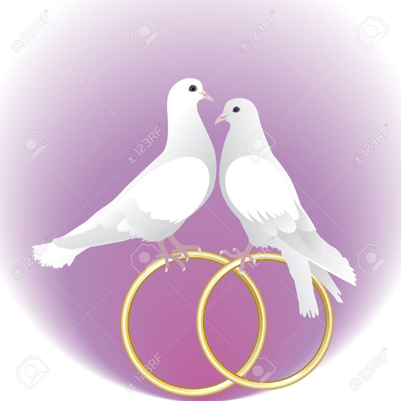Two White Pigeons And Gold Wedding Rings Royalty Free Cliparts ...