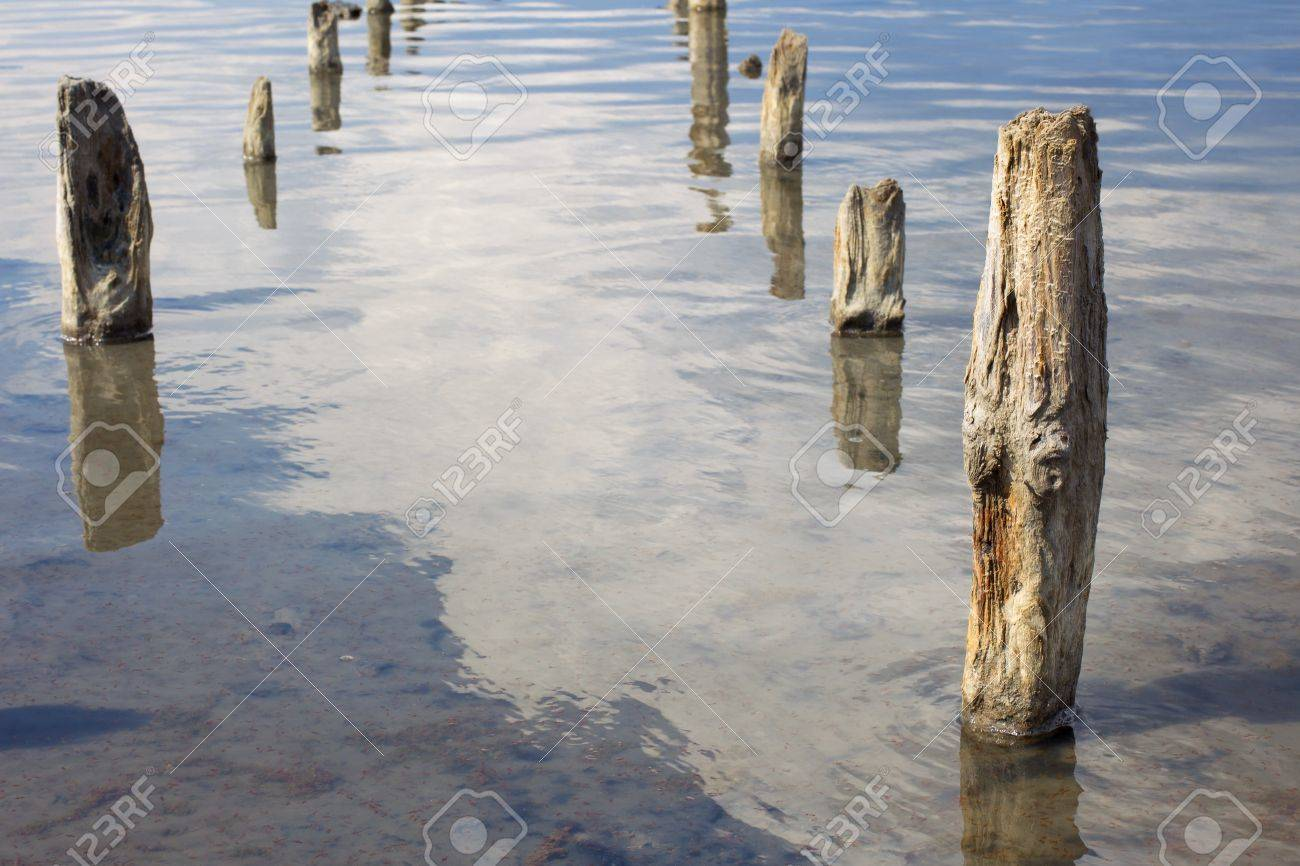 The old wooden pillars in the water salty Dead Sea. Crustaceans - Artemia in the clear water. Stock Photo - 10573678