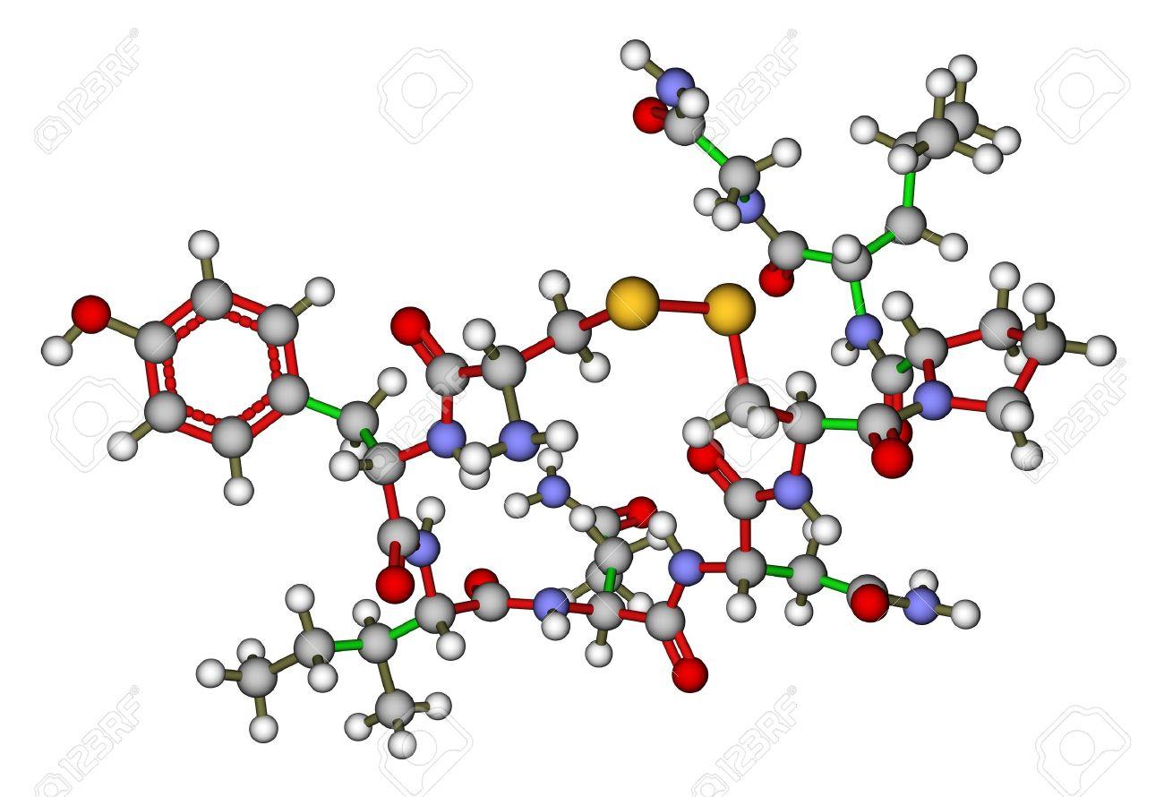 Oxytocin Molecule Oxytocin   love hormone