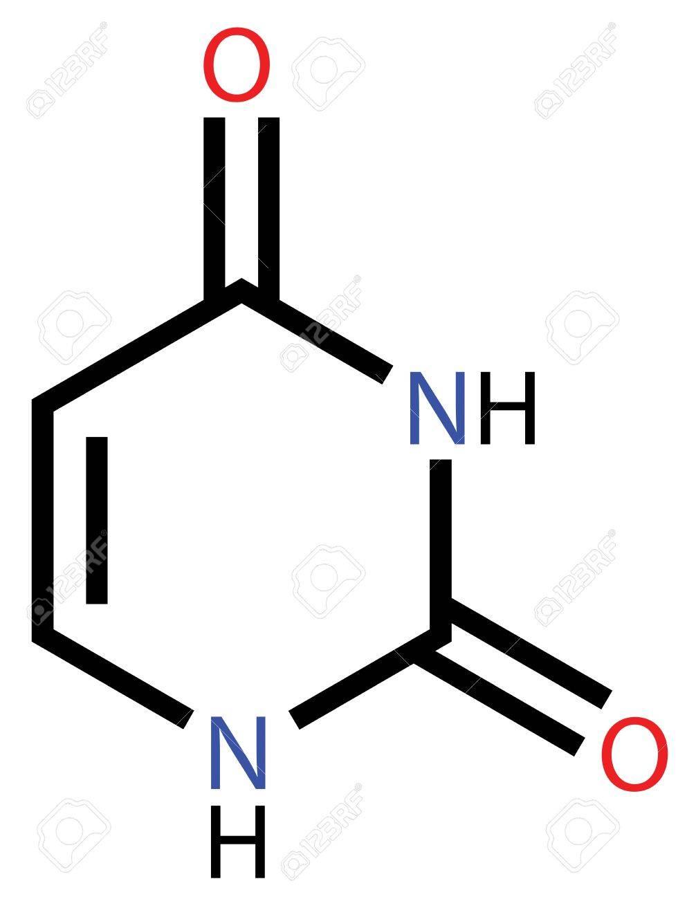 核酸塩基のウラシルの構造式のイ...