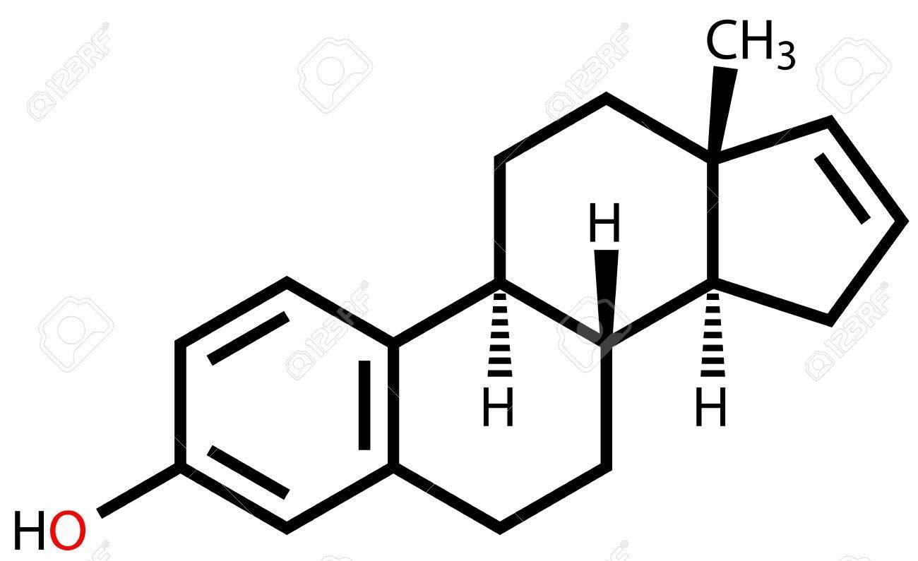 Estratetraenol, a strong female-produced pheromone. Structural formula Stock Vector - 13495754