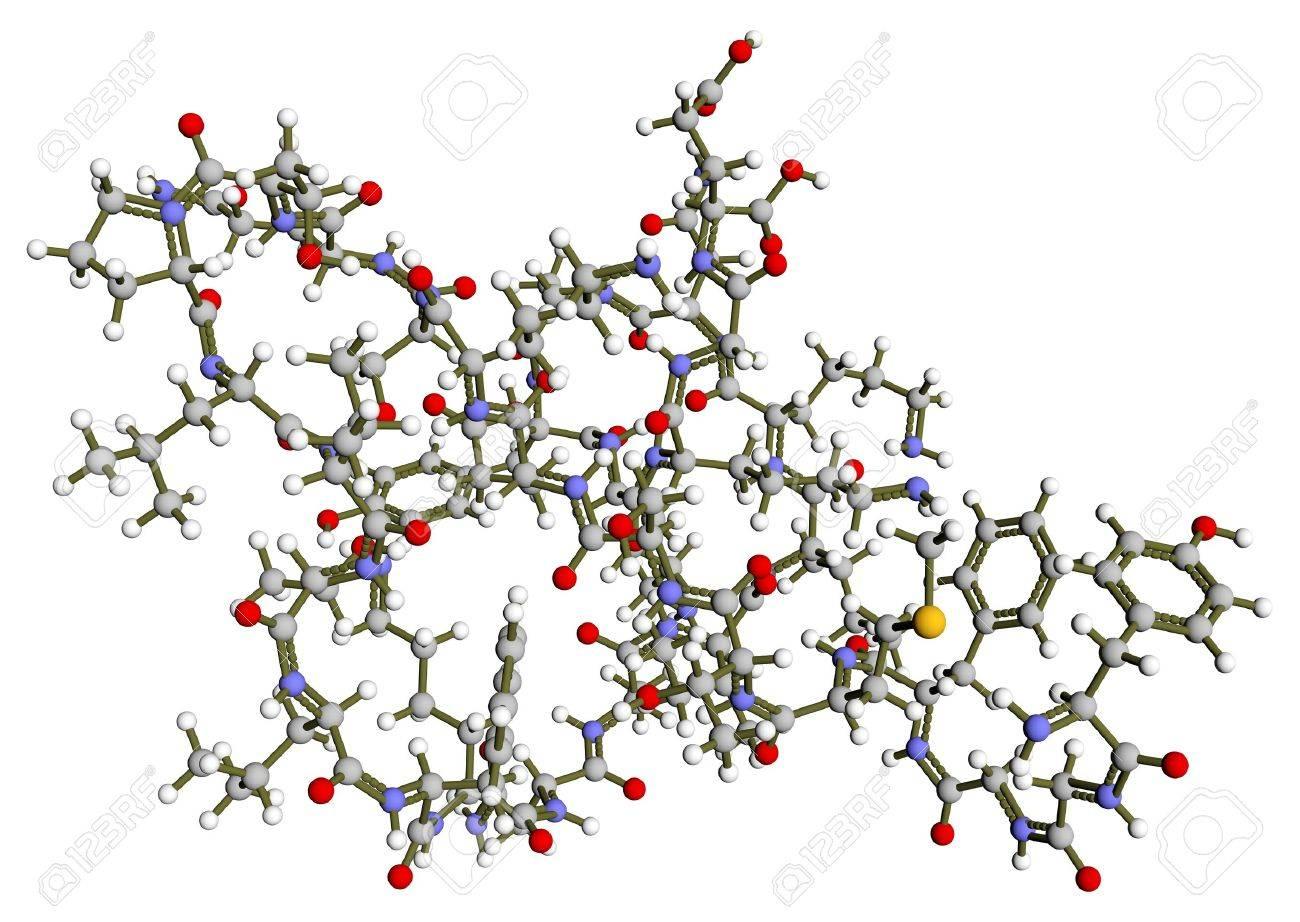 Beta-endorphin 3D molecular structure Stock Photo - 17571974