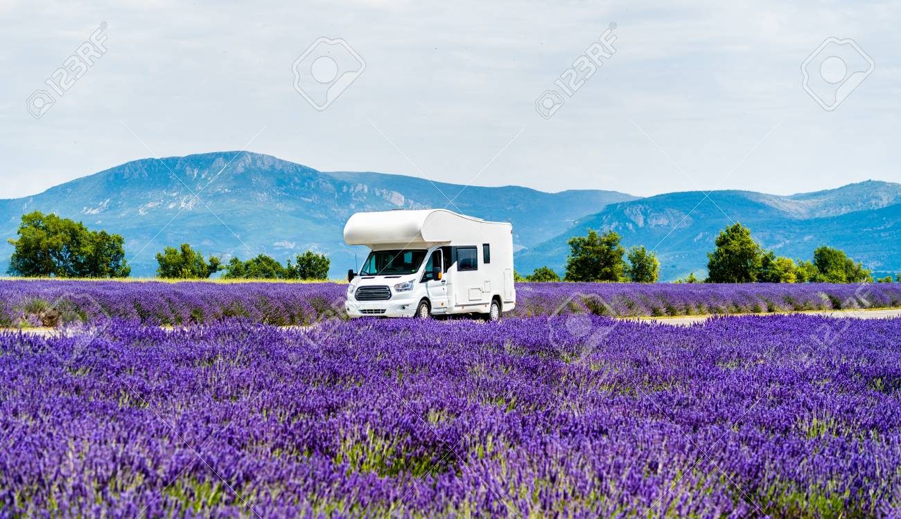 Motorhome in a lavender field in Provence, France - 110878951