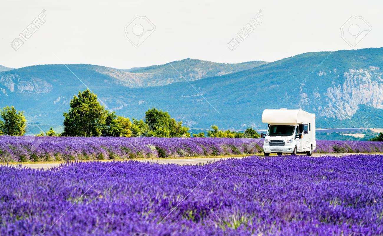 Motorhome in a lavender field in Provence, France - 110878969