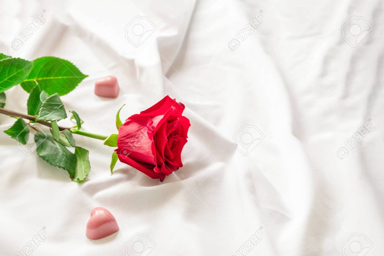 Beautiful Romantic Morning With Red Rose And Little Heart Shaped Stock Photo Picture And Royalty Free Image Image 141412700