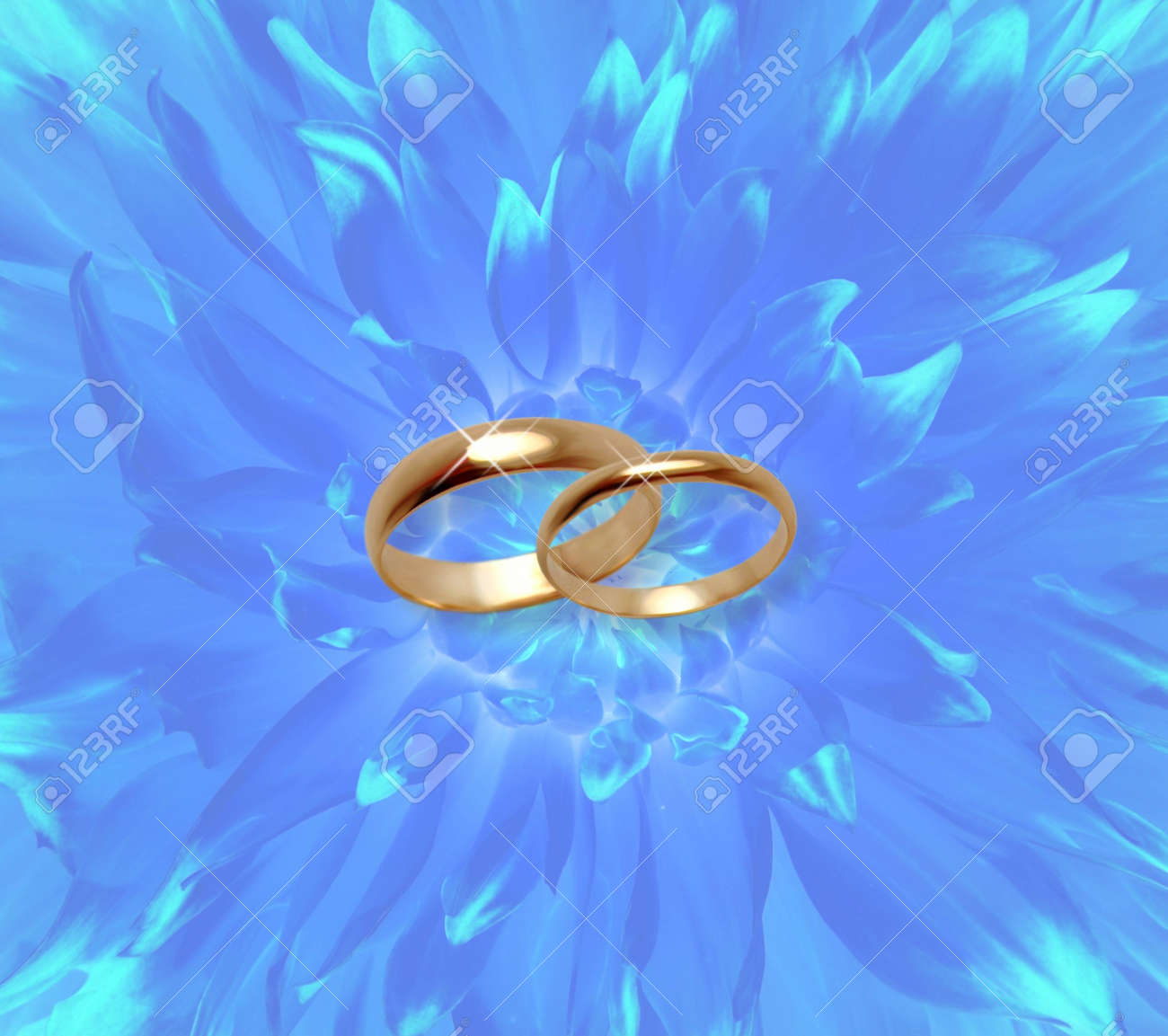 photo blue fine flowers background with wedding rings blue wedding rings Blue fine flowers background with wedding rings Stock Photo