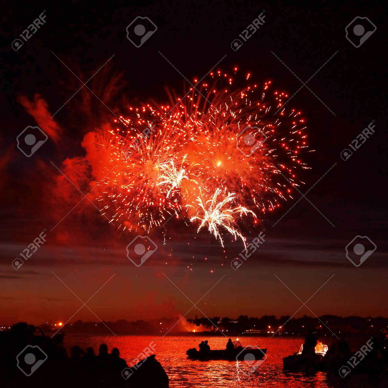 Celebratory bright firework in a night sky Stock Photo - 19496649