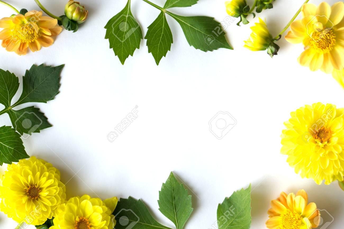 Der Rahmen Der Kugelförmigen Gelben Blüten Und Grünen Blättern ...