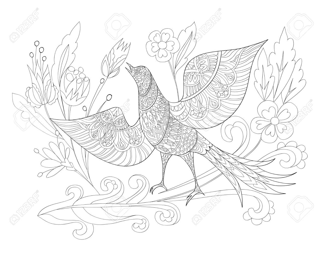 Coloring Book Page Fantasy Bird And Flowers Vector Illustration Hand Drawn Stock