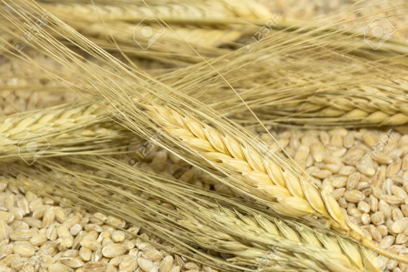 Getreide für die Mercadona-Diät