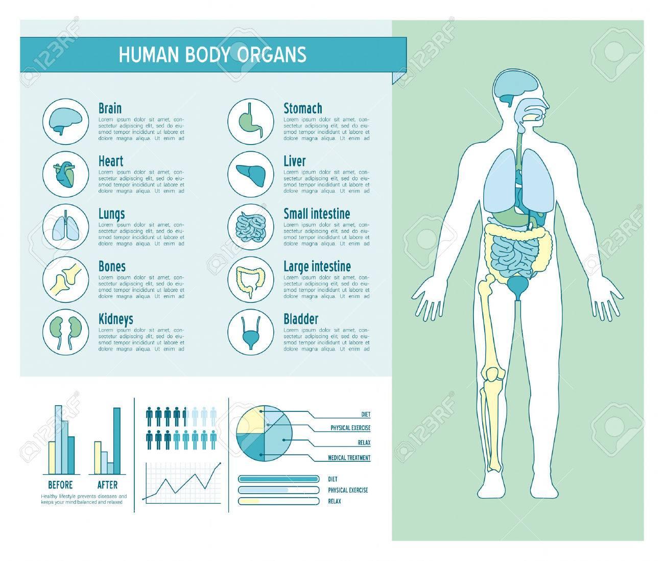 Infografía Cuidado De La Salud Del Cuerpo Humano, Con Médicos Iconos ...