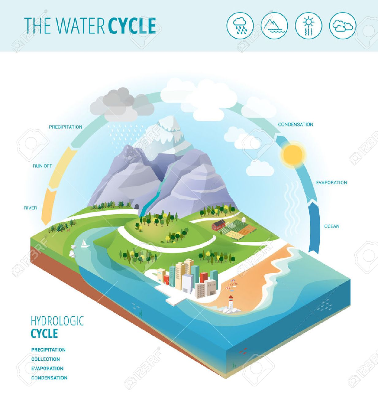 The Water Cycle Diagram Showing Precipitation Collection Evaporation And Condensation Of On A
