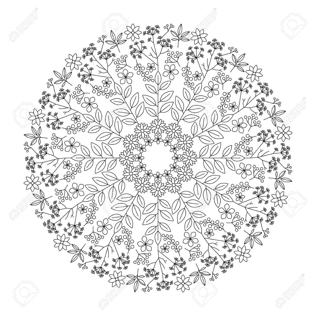 Kräuter Mandala Mit Blättern, Blumen Und Pflanzen, Erwachsene ...